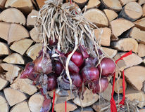 Organic red onion Royalty Free Stock Images