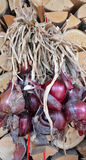 Organic red onion Stock Photo