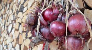 Organic red onion Royalty Free Stock Photo