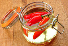 Organic red paprika in sunflower oil Stock Images
