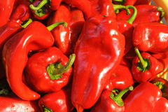 Organic red peppers Royalty Free Stock Photography