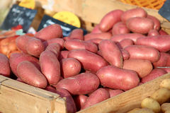 Organic Red Potatoes in a Bin at a Farmers Market stock photos