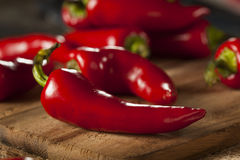 Organic Red Spicy Fresno Peppers Royalty Free Stock Image
