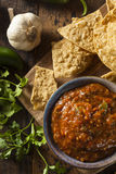 Organic Red Spicy Salsa Stock Photography
