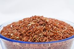 Organic red thai jasmine rice Stock Images