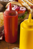 Organic Red Tomato Ketchup Stock Photography