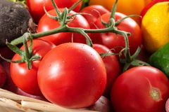 Organic red tomatoes in cluster. Healthy red tomatoes in a cluster royalty free stock images