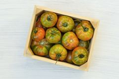 Organic red tomatoes in crate. royalty free stock photos