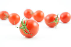 Organic red tomatoes on white Stock Images