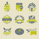 Organic retro labels and badges with leaves stock illustration