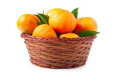 Organic ripe mandarins in basket on white background Stock Photography