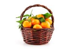 Organic ripe mandarins (tangerines) in basket Royalty Free Stock Image