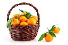 Organic ripe mandarins (tangerines) in basket Stock Photography