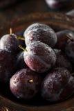 Organic Ripe Purple Prune Plums Royalty Free Stock Images