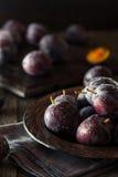 Organic Ripe Purple Prune Plums Royalty Free Stock Photos