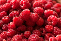 Organic Ripe Raspberries Stock Photography