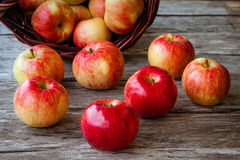 Organic ripe red apples Stock Photo