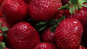 Red organic ripe strawberry. Strawberry on green background. Best red strawberry background. Fresh strawberries. Appetizing and delicious beautiful stock footage