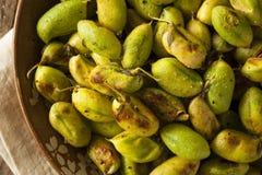 Organic Roasted Fresh Garbanzo Beans Stock Photo