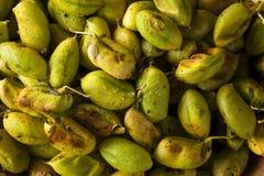 Organic Roasted Fresh Garbanzo Beans Royalty Free Stock Photo