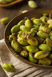 Organic Roasted Fresh Garbanzo Beans Stock Image