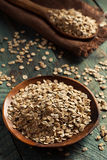Organic Rolled Rye Flakes Stock Images