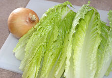 Organic Romaine lettuce leaves and a onion on chopping board Royalty Free Stock Image