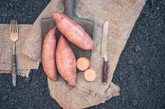 Organic root vegetables sweet potato lying on the spade and coarse cloth served village. Autumn harvest. Copy space. The horizontal frame Royalty Free Stock Image