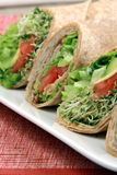 Organic sandwich wraps Royalty Free Stock Photos