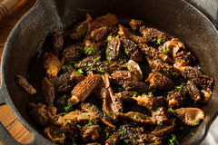 Organic Sauteed Morel Mushrooms. REady to Eat Royalty Free Stock Image