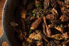 Organic Sauteed Morel Mushrooms. REady to Eat Stock Photo