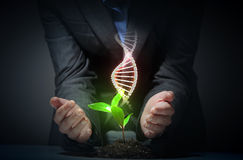 Organic science theme with dna royalty free stock images