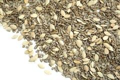 Organic Seeds Stock Photography