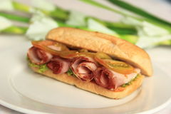 Organic senadwich. Healthy ham sandwich with green in background Stock Photography