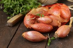 Organic shallots Royalty Free Stock Images