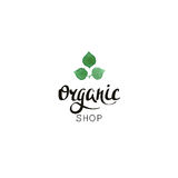 Organic shop. Eco badge with handwritten text and leaves in watercolor style. Stock Images