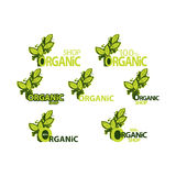 Organic shop. set of logos with green leaves. Stock Image