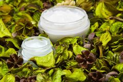 Organic skin care products Stock Photos