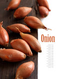 Organic small onions on wooden table Stock Images