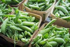 Organic Snap Peas Baskets Stock Image