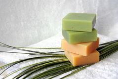Organic soap with towel and palm frond Stock Image