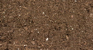 Organic soil close up Stock Photos