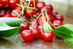 Organic sour cherries Royalty Free Stock Photography