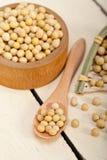Organic soya beans Stock Images