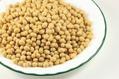 Organic Soybean Royalty Free Stock Image