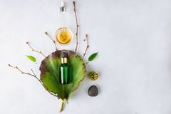 Organic Spa Cosmetic With Herbal Ingredients. Vegetable serum for skin with herbal extracts. glass bottle with a pipette. Organic Spa Cosmetic With Herbal royalty free stock images