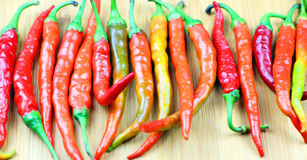 Organic Spicy Fresno Peppers Royalty Free Stock Image