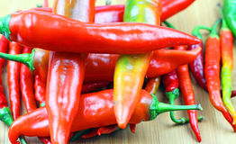 Organic Spicy Fresno Peppers Stock Photography