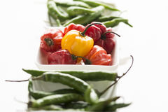 Organic Spicy Hot Peppers Royalty Free Stock Images