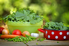 Organic spinach and peas Royalty Free Stock Photo